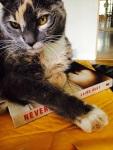 Laird Hunt cat